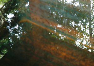 鬼怒川温泉の景色